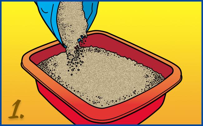 Llene el fondo de su caja con 6 - 8 cm de arena. Dependiendo del tamaño de su gato
