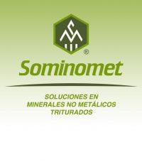 Sominomet Logo - Frisky Cat